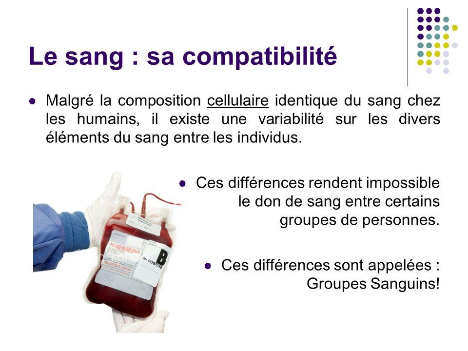 Le sang : groupes sanguins À la surface des globules rouges, il existe des ANTIGÈNES (formes spéciales) : A, B et + ( « O » et « - » signifient « aucun antigène ») Dans le plasma sanguin, il y a des ANTICORPS produits par les antigènes qui détruisent les globules rouges ayant un ANTIGÈNE étranger Ainsi, si du sang avec un antigène étranger est transfusé à une personne, ses anticorps sacharneront à le détruire.