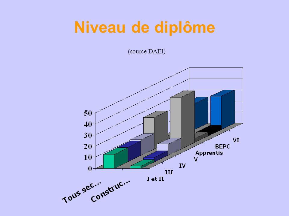 Niveau de diplôme (source DAEI)