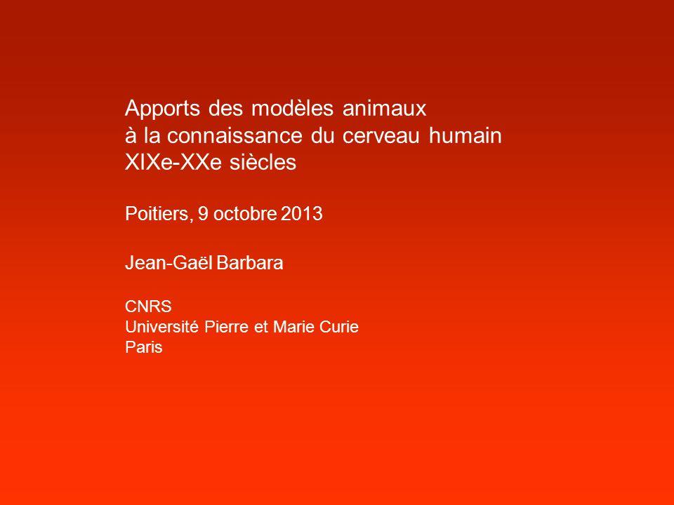 Apports des modèles animaux à la connaissance du cerveau humain XIXe-XXe siècles Poitiers, 9 octobre 2013 Jean-Gaël Barbara CNRS Université Pierre et
