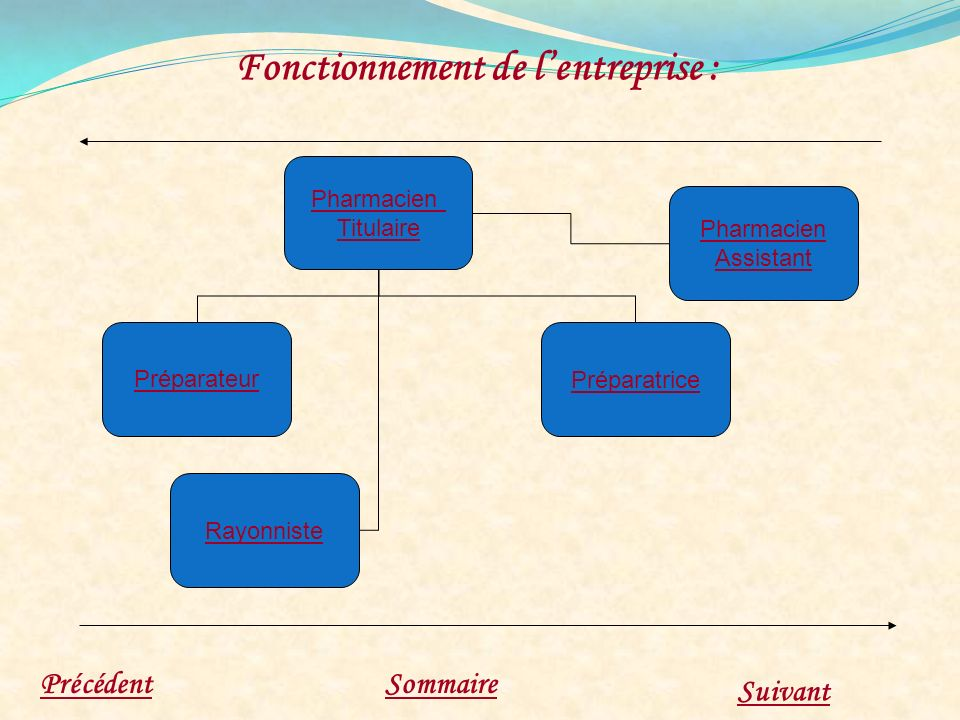Fonctionnement de lentreprise : PrécédentSommaire Suivant Préparatrice Préparateur Rayonniste Pharmacien Assistant Pharmacien Titulaire