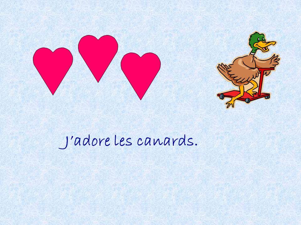 Jadore les canards.