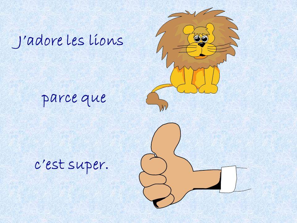 Jadore les lions parce que cest super.