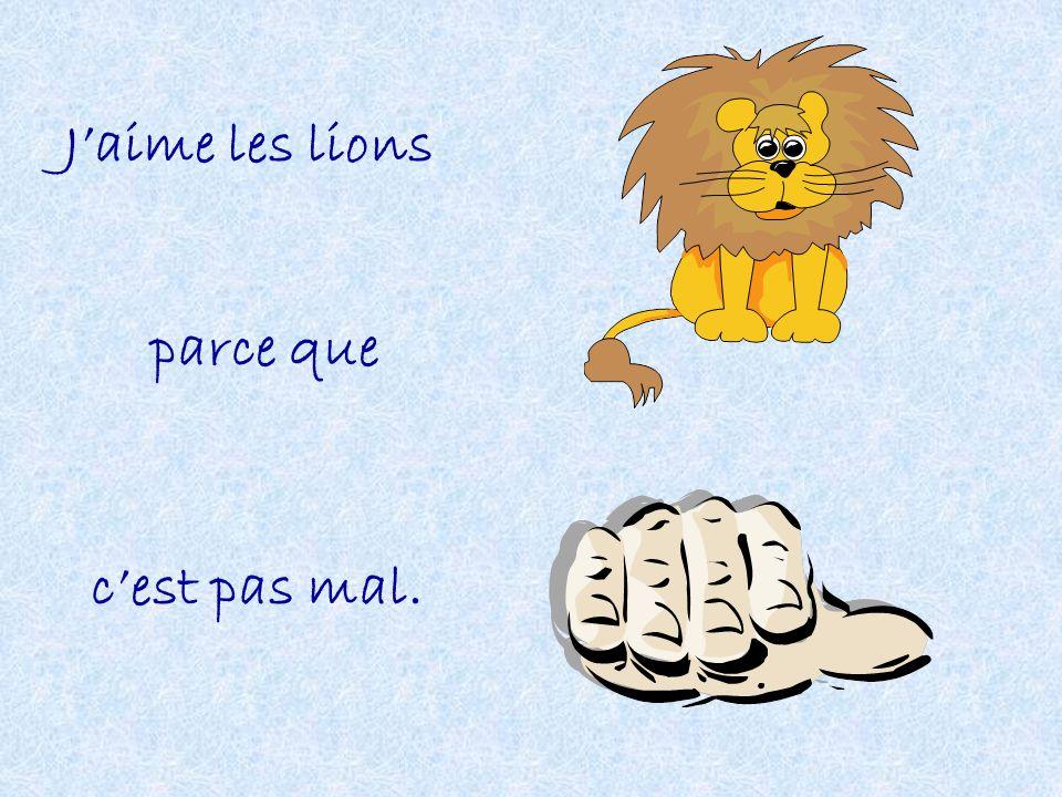 Jaime les lions parce que cest pas mal.