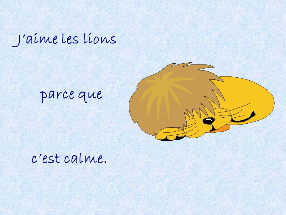 Jaime les lions parce que cest calme.