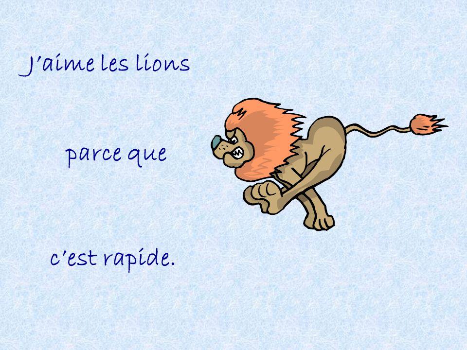 Jaime les lions parce que cest rapide.
