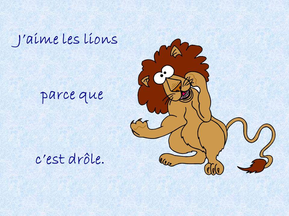 Jaime les lions parce que cest drôle.