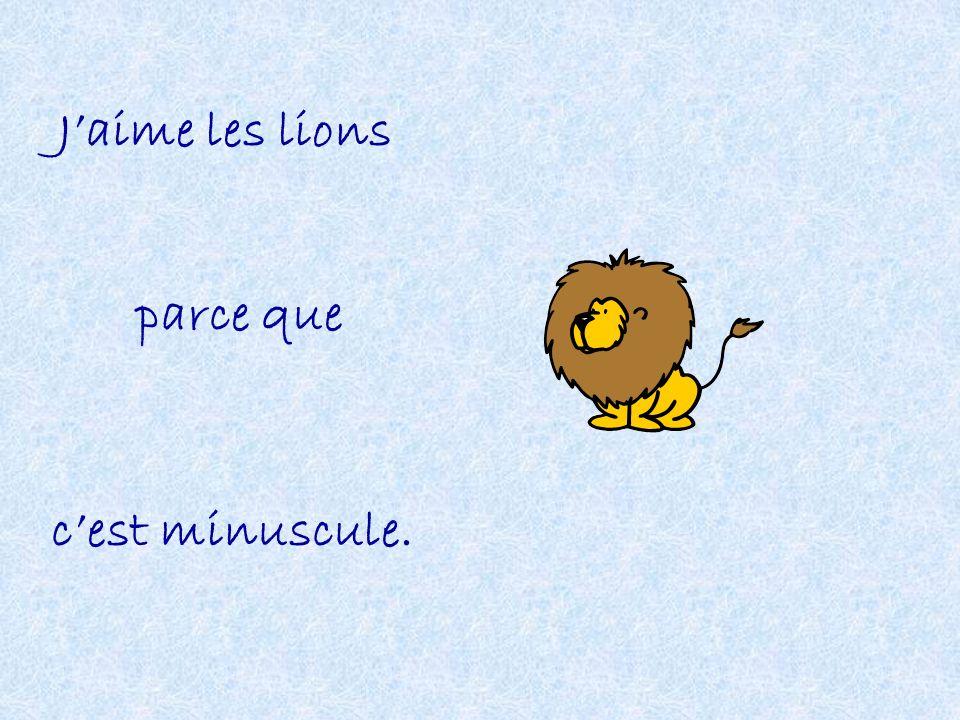 Jaime les lions parce que cest minuscule.