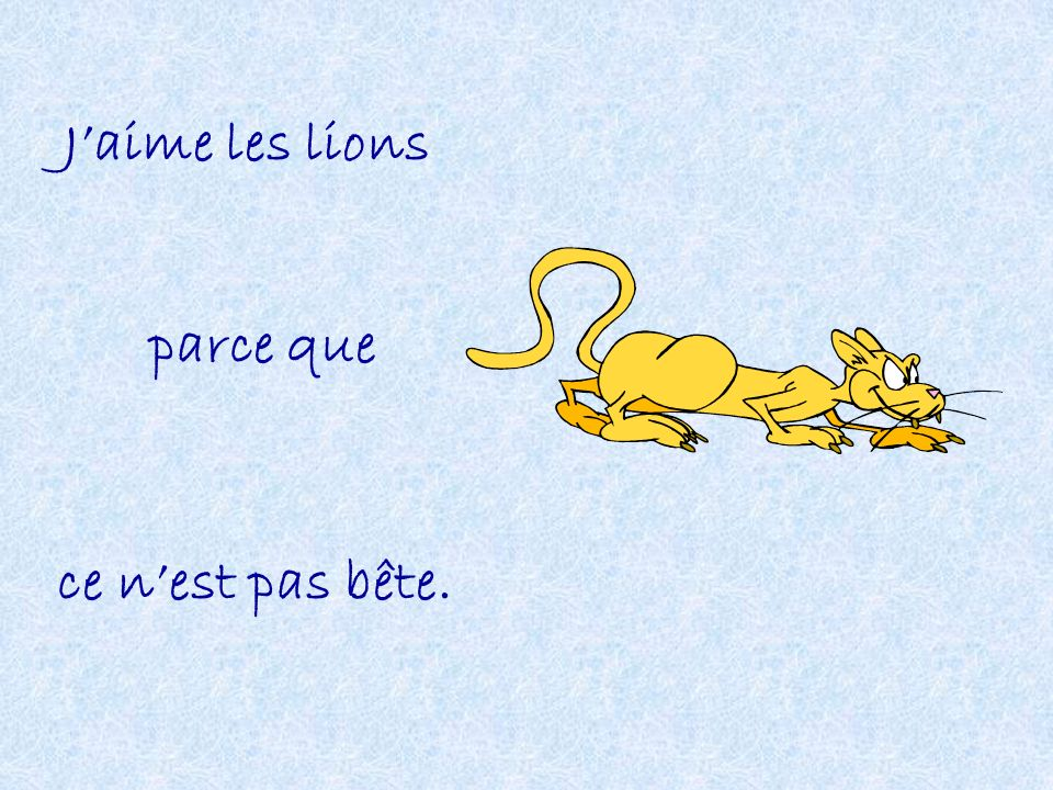 Jaime les lions parce que ce nest pas bête.