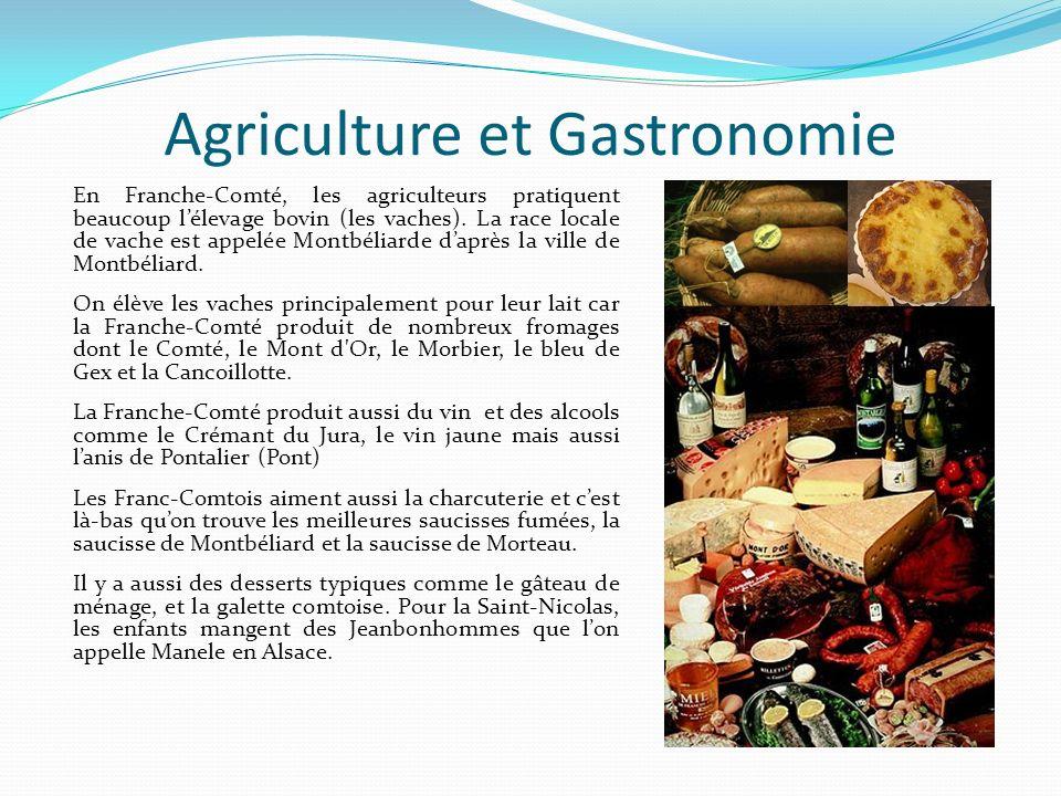 Agriculture et Gastronomie En Franche-Comté, les agriculteurs pratiquent beaucoup lélevage bovin (les vaches). La race locale de vache est appelée Mon