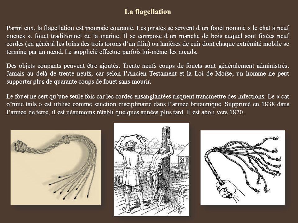 La flagellation Parmi eux, la flagellation est monnaie courante. Les pirates se servent dun fouet nommé « le chat à neuf queues », fouet traditionnel
