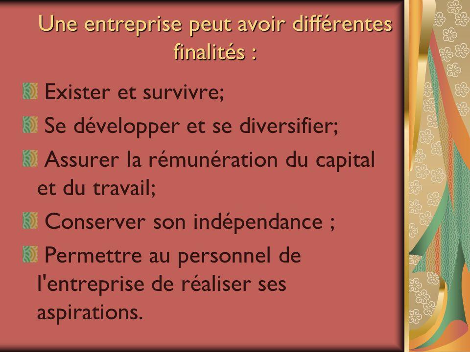 Une entreprise peut avoir différentes finalités : Exister et survivre; Se développer et se diversifier; Assurer la rémunération du capital et du trava