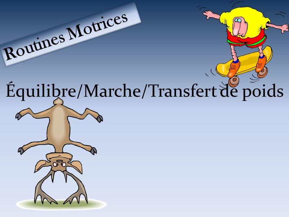 Équilibre/Marche/Transfert de poids Routines Motrices