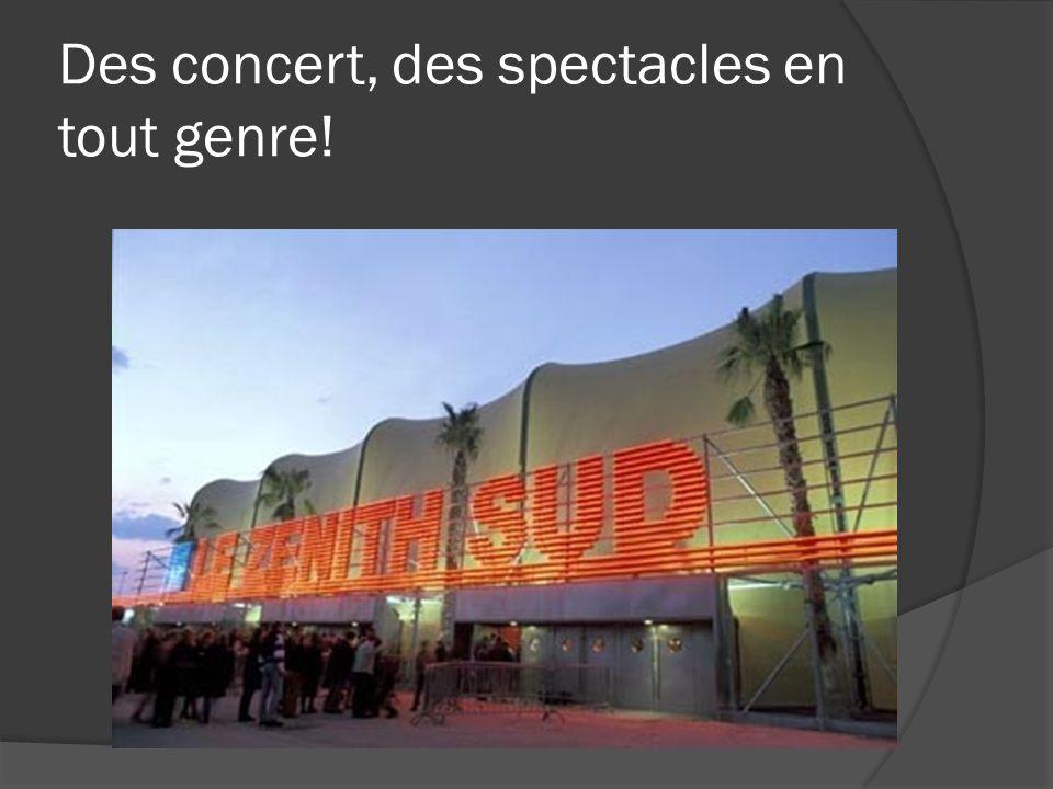 Des concert, des spectacles en tout genre!