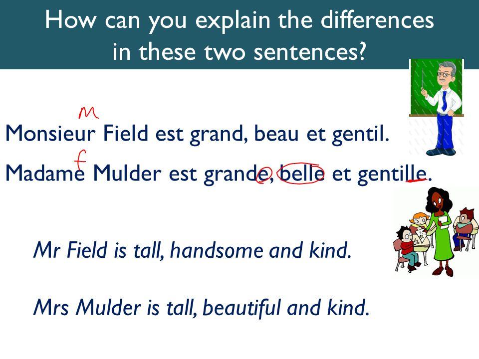 Monsieur Field est grand, beau et gentil. Madame Mulder est grande, belle et gentille. How can you explain the differences in these two sentences? Mr