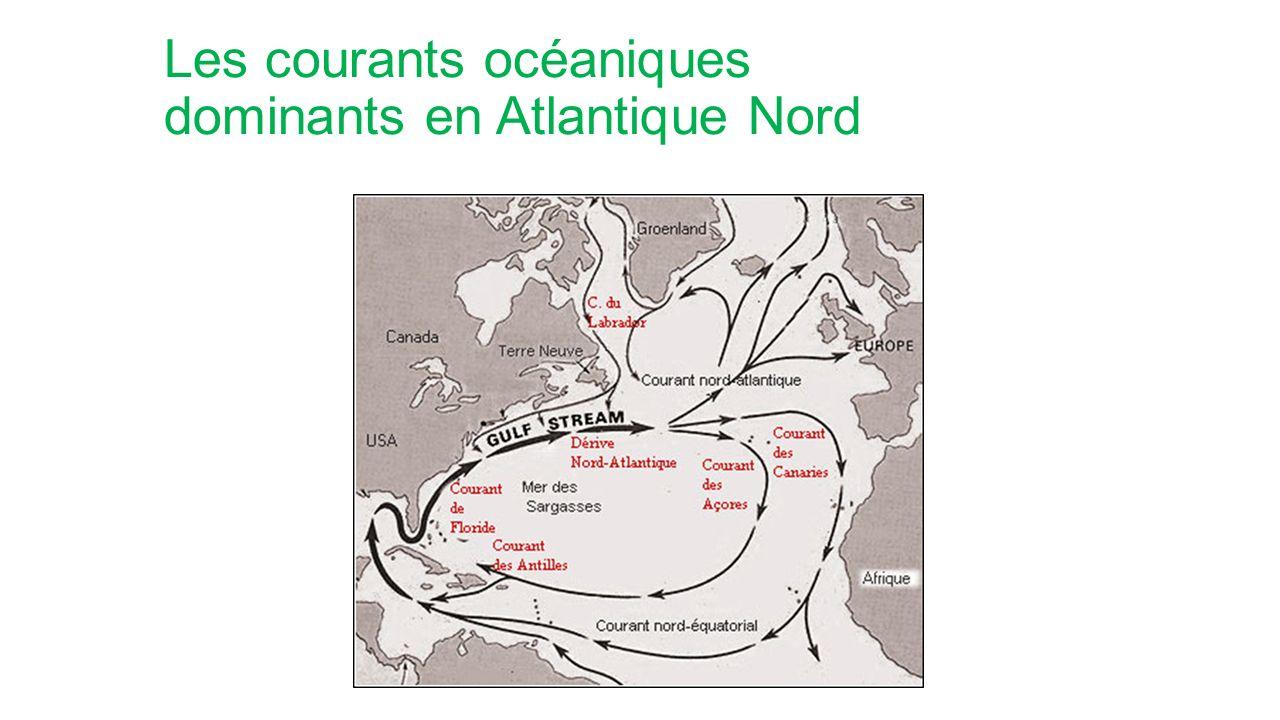 Les courants océaniques dominants en Atlantique Nord