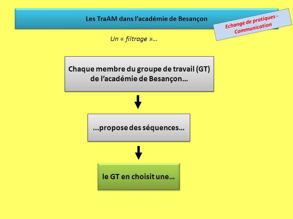 Un groupe de travail académique (GT) (actif depuis de nombreuses années) Échange avec une académie « binôme » (Bordeaux) Échange avec une académie « b