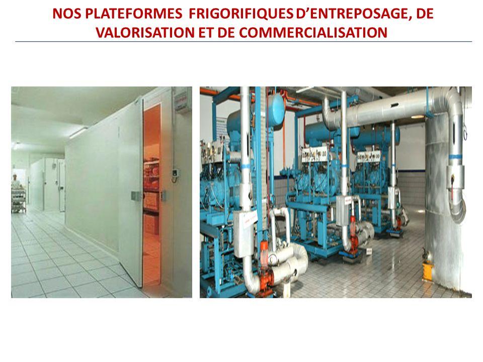 NOS PLATEFORMES FRIGORIFIQUES DENTREPOSAGE, DE VALORISATION ET DE COMMERCIALISATION