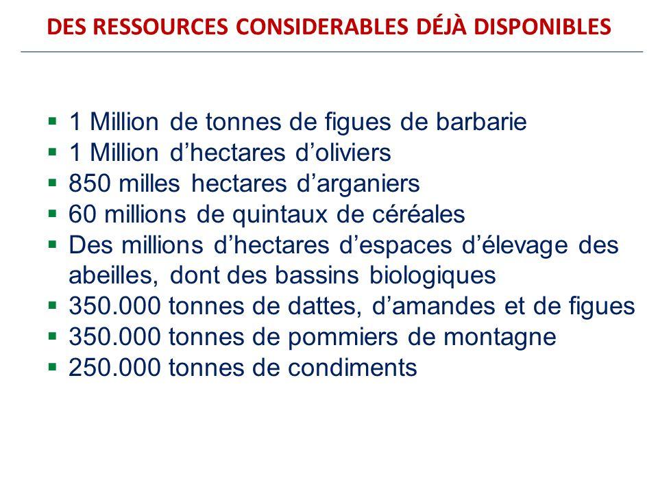DES RESSOURCES CONSIDERABLES DÉJÀ DISPONIBLES 1 Million de tonnes de figues de barbarie 1 Million dhectares doliviers 850 milles hectares darganiers 6