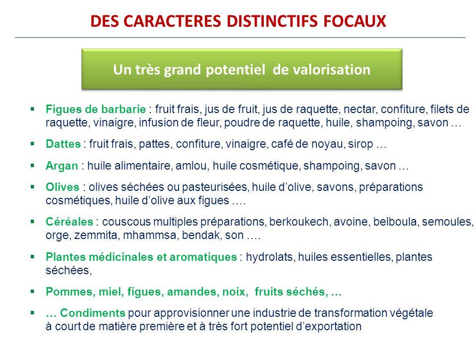 DES CARACTERES DISTINCTIFS FOCAUX Figues de barbarie : fruit frais, jus de fruit, jus de raquette, nectar, confiture, filets de raquette, vinaigre, in