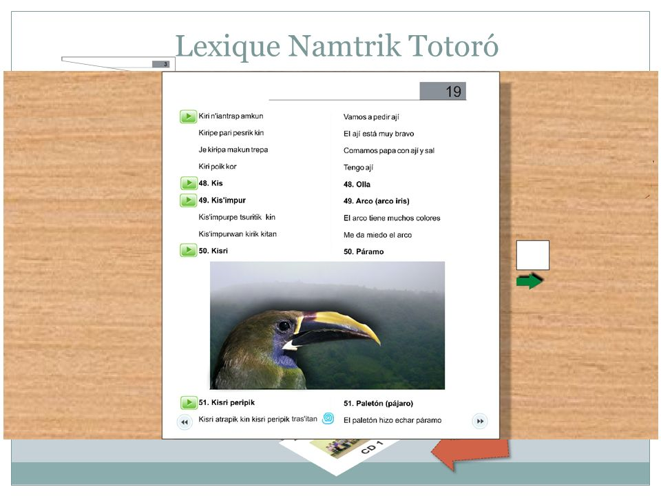 Lexique Namtrik Totoró