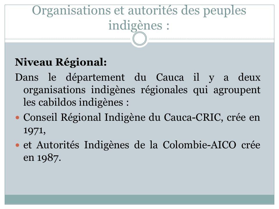 Niveau Régional: Dans le département du Cauca il y a deux organisations indigènes régionales qui agroupent les cabildos indigènes : Conseil Régional Indigène du Cauca-CRIC, crée en 1971, et Autorités Indigènes de la Colombie-AICO crée en 1987.