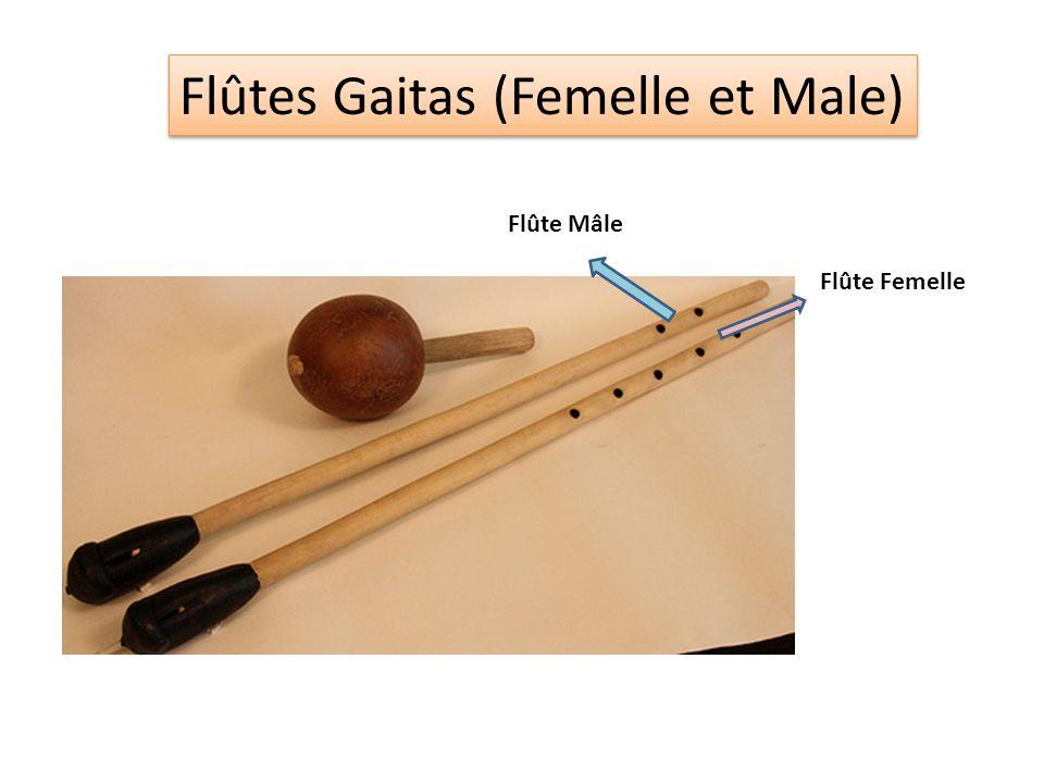 Flûtes Gaitas (Femelle et Male) Flûte Mâle Flûte Femelle