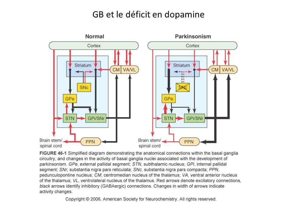 GB et le déficit en dopamine
