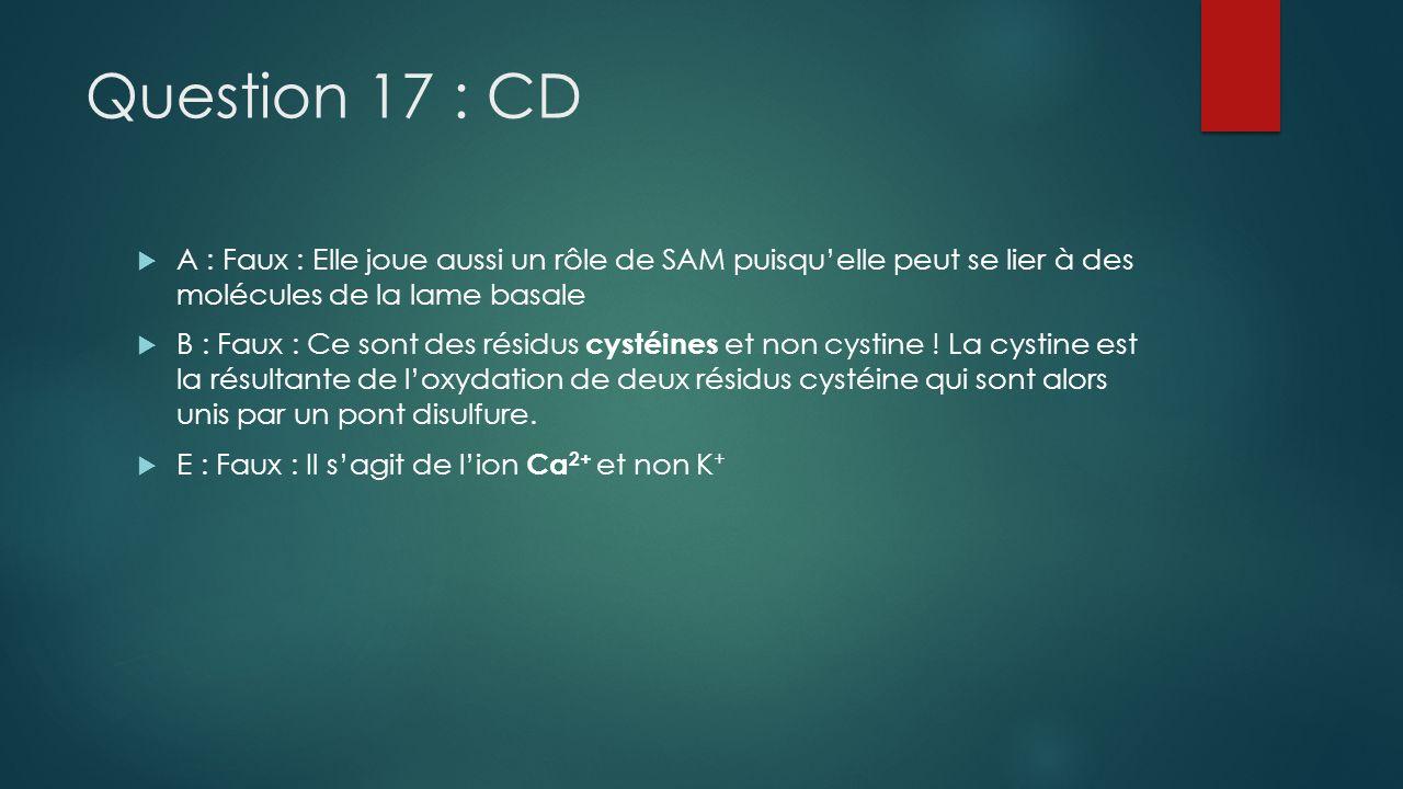 Question 17 : CD A : Faux : Elle joue aussi un rôle de SAM puisquelle peut se lier à des molécules de la lame basale B : Faux : Ce sont des résidus cy