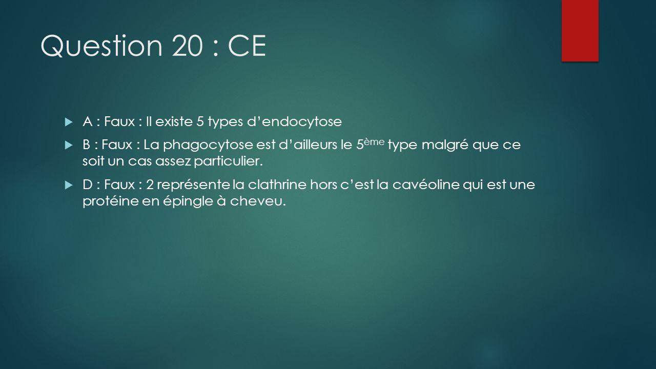 Question 20 : CE A : Faux : Il existe 5 types dendocytose B : Faux : La phagocytose est dailleurs le 5 ème type malgré que ce soit un cas assez partic