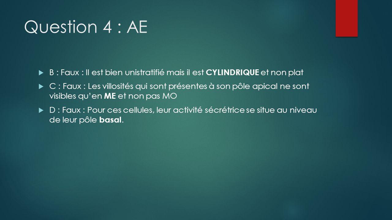 Question 4 : AE B : Faux : Il est bien unistratifié mais il est CYLINDRIQUE et non plat C : Faux : Les villosités qui sont présentes à son pôle apical