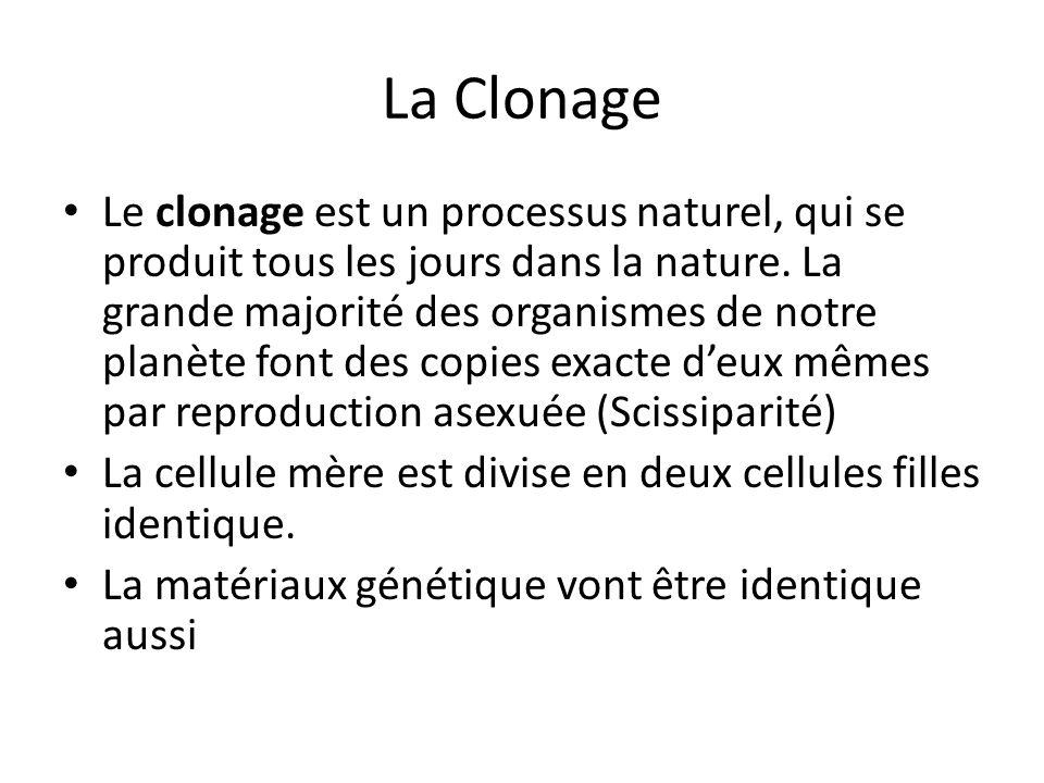La Clonage Le clonage est un processus naturel, qui se produit tous les jours dans la nature. La grande majorité des organismes de notre planète font