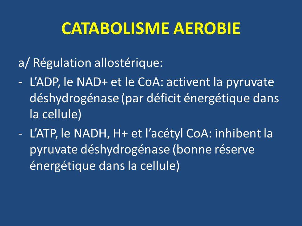 CATABOLISME AEROBIE a/ Régulation allostérique: -LADP, le NAD+ et le CoA: activent la pyruvate déshydrogénase (par déficit énergétique dans la cellule