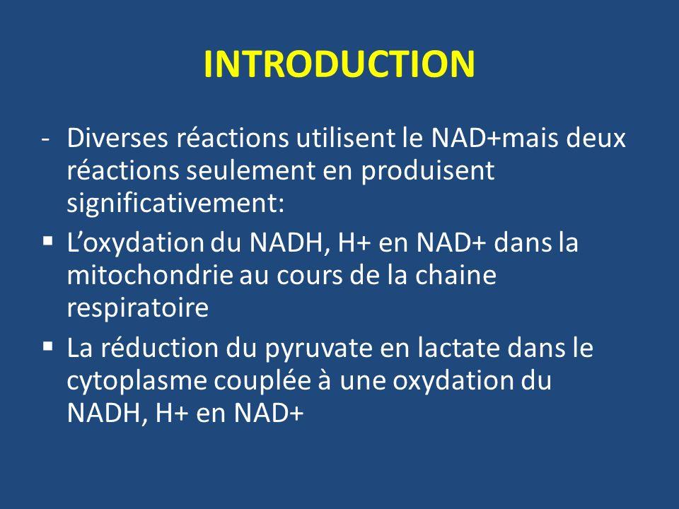 CATABOLISME ANAEROBIE -Déficit en NAD+ dans le cytosol car la chaine respiratoire ne peut plus réoxyder le NADH,H+ -Pour éviter larrêt de la glycolyse et la mort de la cellule, le NADH, H+ est régénéré en NAD+ grâce à la LDH avec formation de lactate Pyruvate + NADH, H+ Lactate + NAD+ LDH