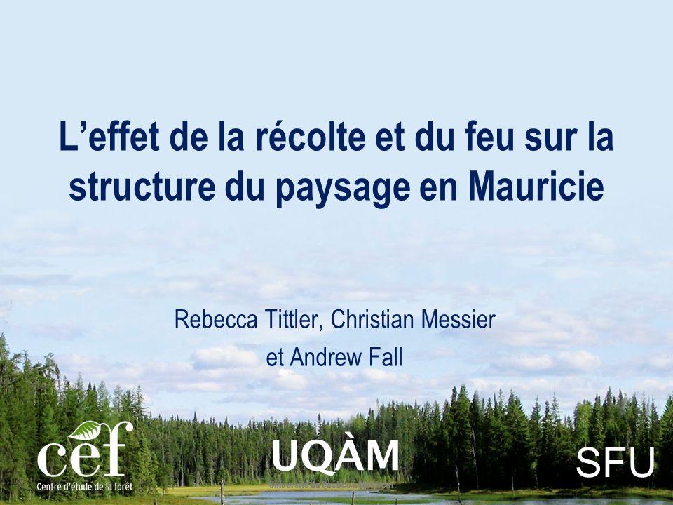 Leffet de la récolte et du feu sur la structure du paysage en Mauricie Rebecca Tittler, Christian Messier et Andrew Fall UQÀM Université du Québec à Montréal SFU