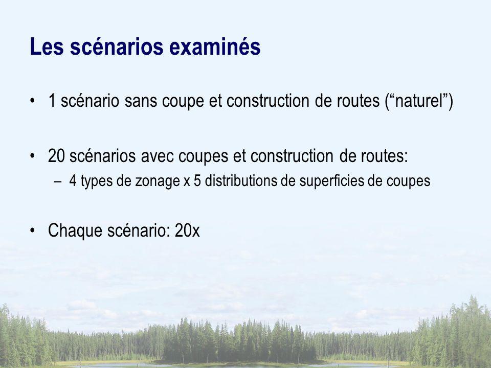 Les scénarios examinés 1 scénario sans coupe et construction de routes (naturel) 20 scénarios avec coupes et construction de routes: –4 types de zonage x 5 distributions de superficies de coupes Chaque scénario: 20x