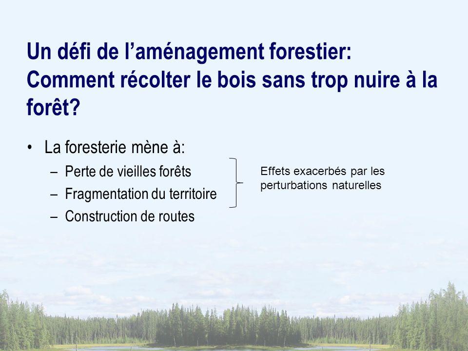 Un défi de laménagement forestier: Comment récolter le bois sans trop nuire à la forêt? La foresterie mène à: –Perte de vieilles forêts –Fragmentation