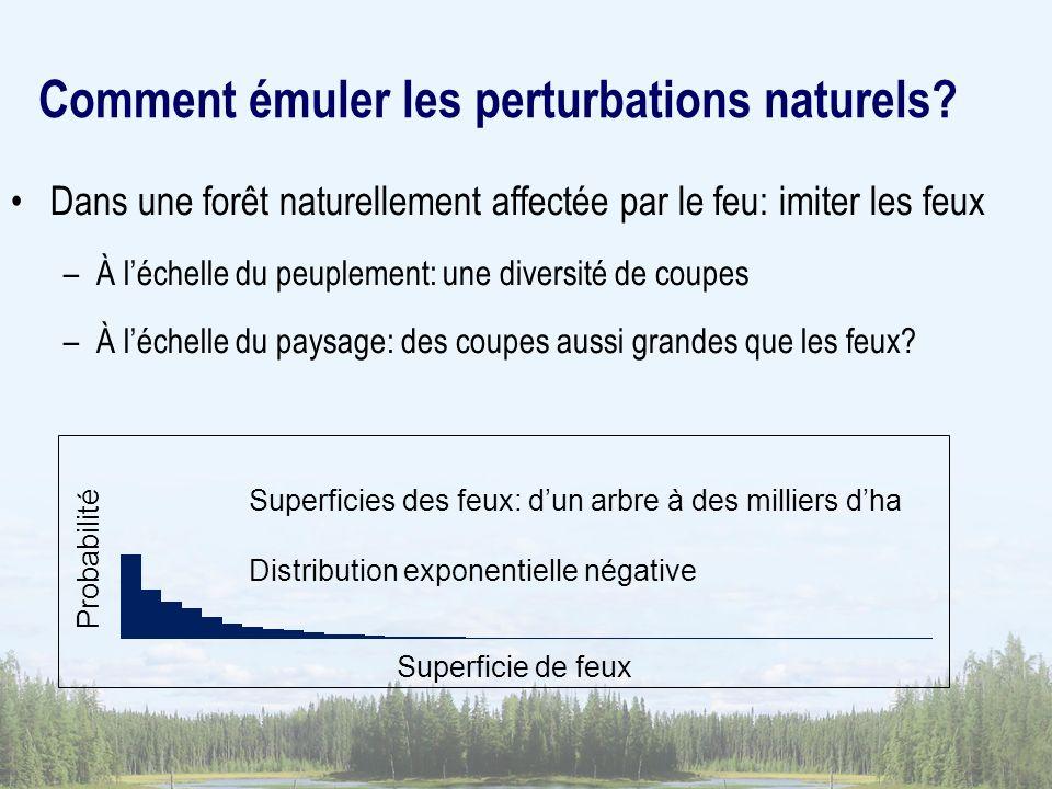 Comment émuler les perturbations naturels? Dans une forêt naturellement affectée par le feu: imiter les feux –À léchelle du peuplement: une diversité