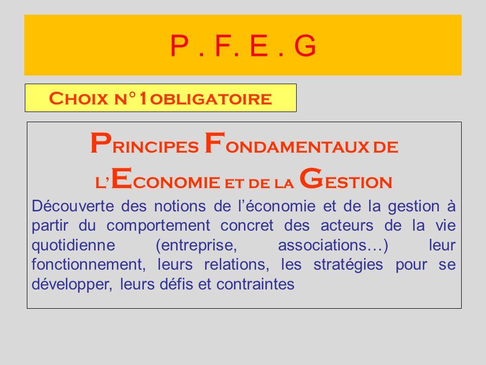 Choix n°1obligatoire P RINCIPES F ONDAMENTAUX DE L E CONOMIE et de la G ESTION Découverte des notions de léconomie et de la gestion à partir du compor