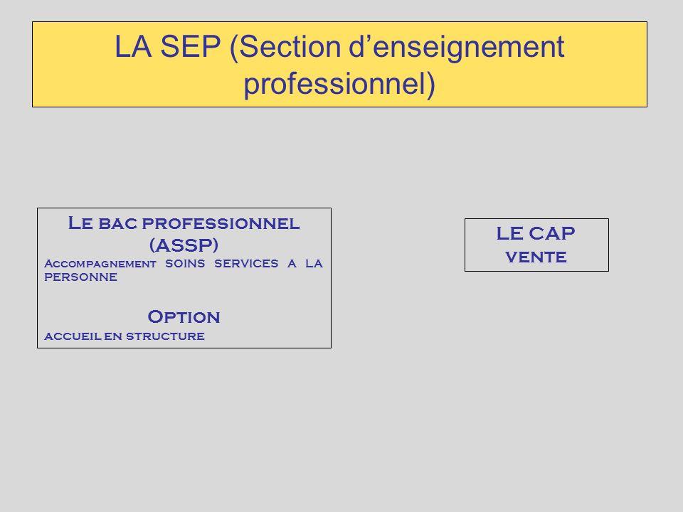 LA SEP (Section denseignement professionnel) LE CAP vente Le bac professionnel (ASSP) Accompagnement SOINS SERVICES A LA PERSONNE Option accueil en st