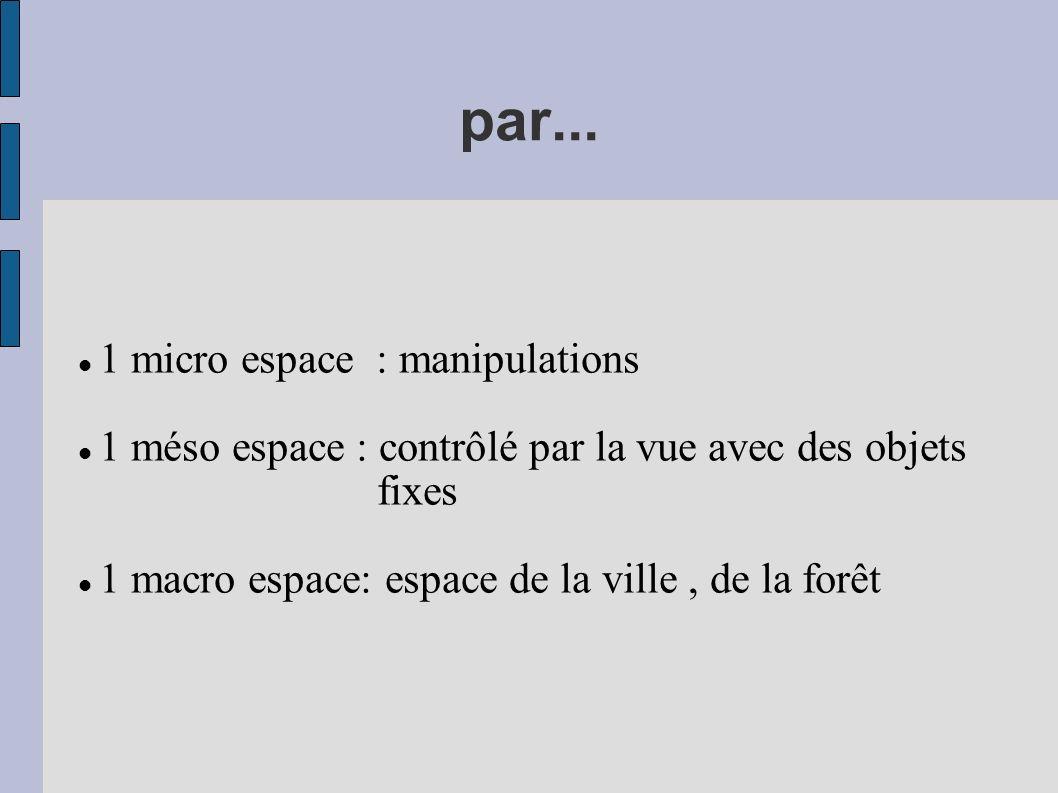 par... 1 micro espace : manipulations 1 méso espace : contrôlé par la vue avec des objets fixes 1 macro espace: espace de la ville, de la forêt