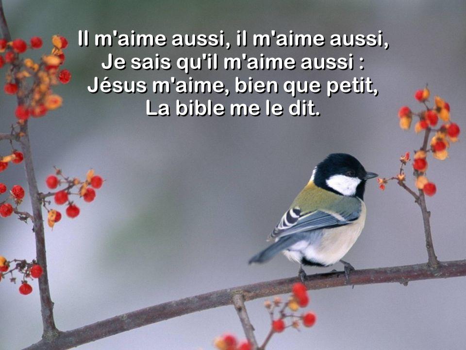 Il m'aime aussi, il m'aime aussi, Je sais qu'il m'aime aussi : Jésus m'aime, bien que petit, La bible me le dit.