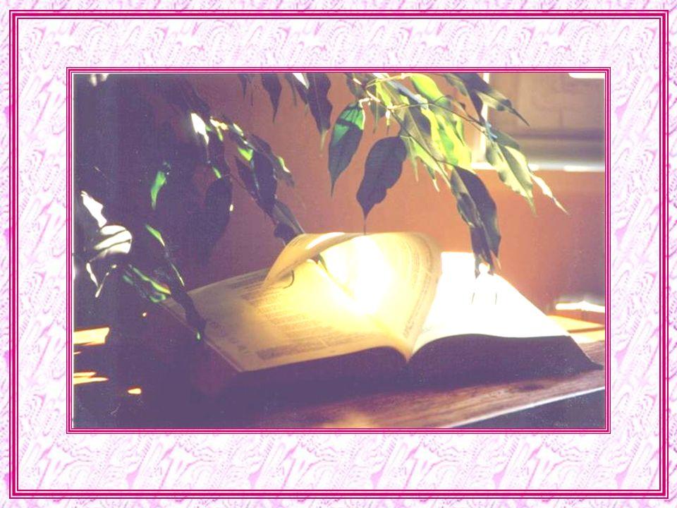 -un gros livre. - hum… Les livres, cest comme les gens, il y a lapparence, et ce quils contiennent ! que contient la Bible ? - la vie de Jésus ? -oui,