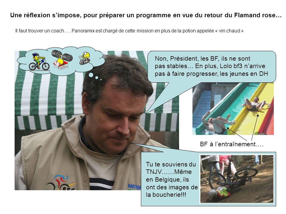 Une réflexion simpose, pour préparer un programme en vue du retour du Flamand rose… Il faut trouver un coach…..Panoramix est chargé de cette mission e