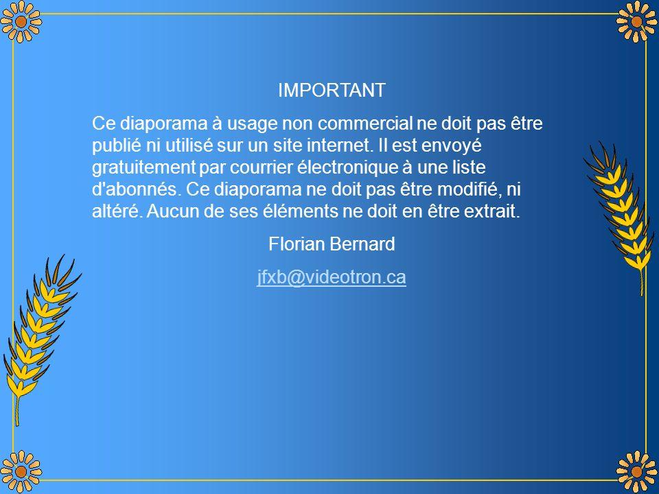 Bilitis - Orchestre de Frank Pourcell Création Florian Bernard Tous droits réservés – 2005 jfxb@videotron.ca