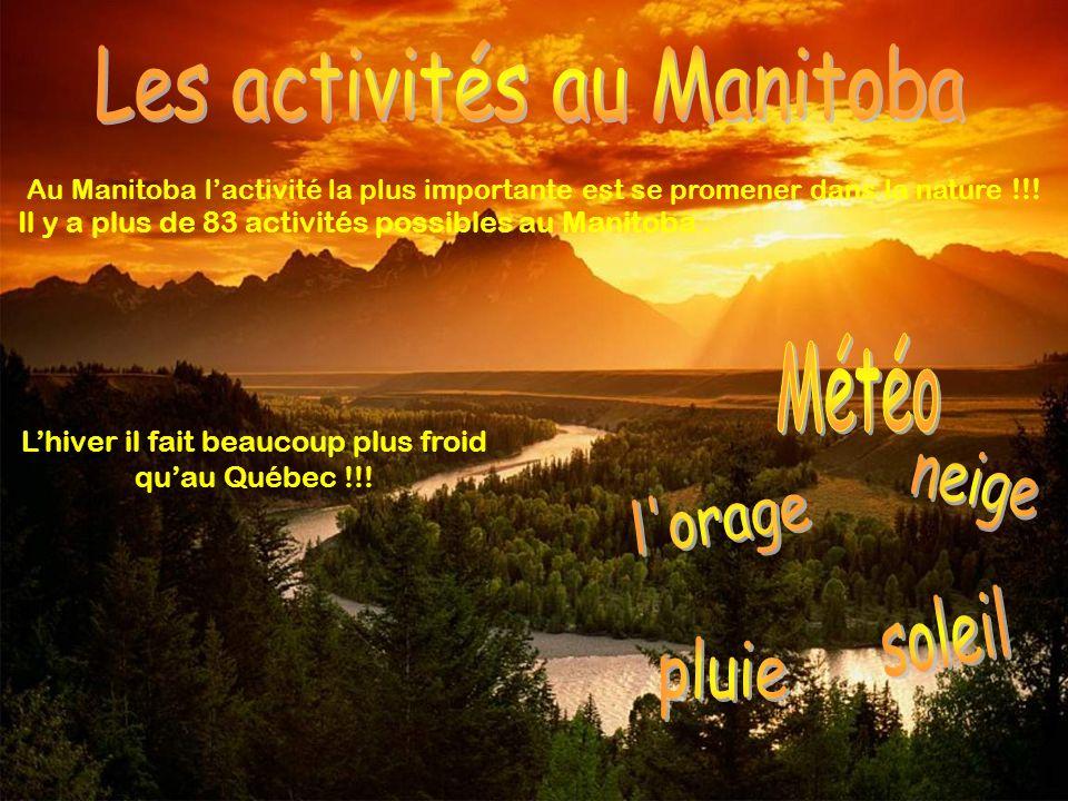 Au Manitoba lactivité la plus importante est se promener dans la nature !!! Il y a plus de 83 activités possibles au Manitoba. Lhiver il fait beaucoup