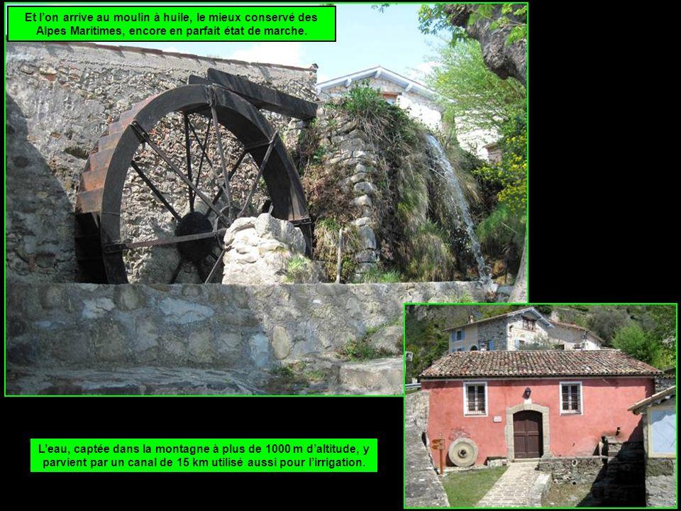 Et lon arrive au moulin à huile, le mieux conservé des Alpes Maritimes, encore en parfait état de marche.