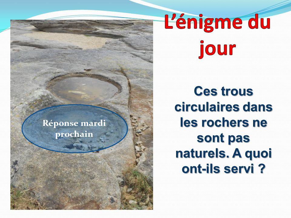Ces trous circulaires dans les rochers ne sont pas naturels. A quoi ont-ils servi ? Réponse mardi prochain