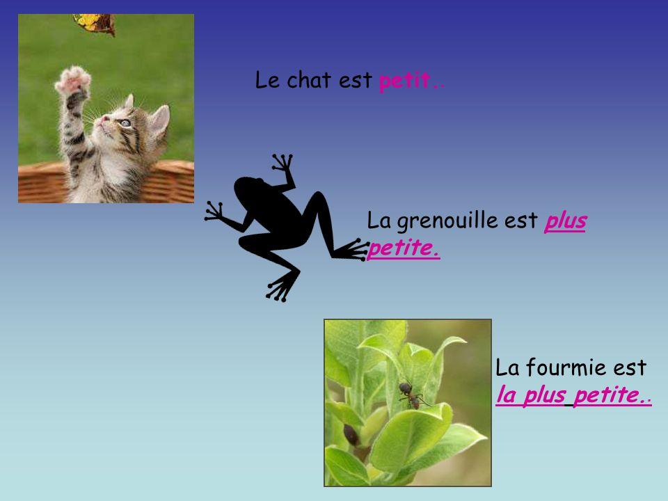 Le chat est petit.. La grenouille est plus petite. La fourmie est la plus petite..