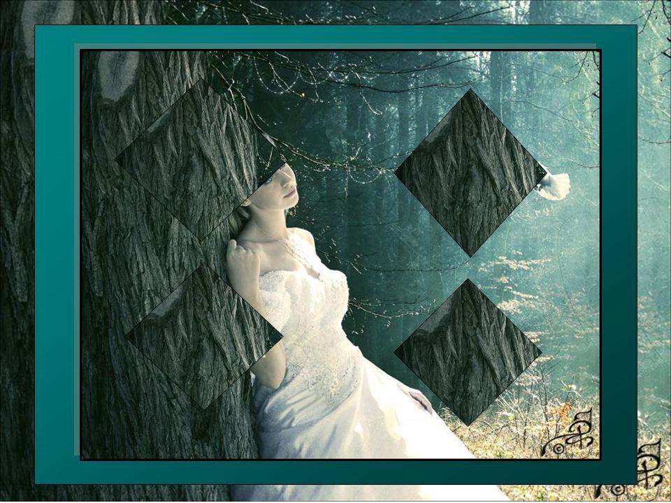 Pour vivre de notre potentiel inhérent… Et faire jaillir en nous cette étincelle Divine… Celle de notre cœur qui est de la couleur… De la blancheur infinie… Vous voyez que si vous le ressentiez vraiment.