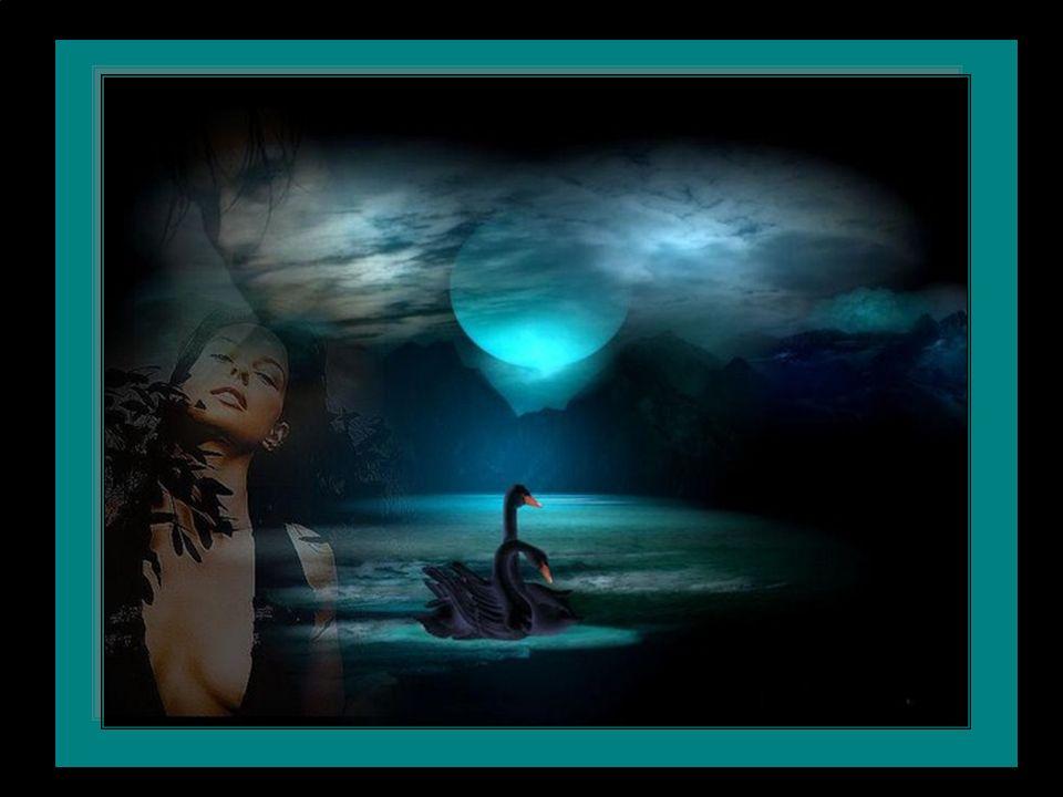 Prenez à tourner votre cœur… Vers la blancheur infinie En prenant tout simplement soin de lui… Dans la quiétude la douceur et la sagesse… Pour vivre cette vie qui est la nôtre dans l ivresse Clara
